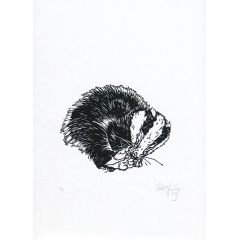 11_sleepy_badger_30x30_melissahalley_200