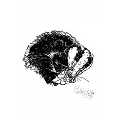 greetingcard_sleeping__badger_melissa_halley