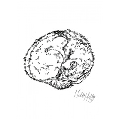 greetingcard_sleeping_wolf_melissa_halley